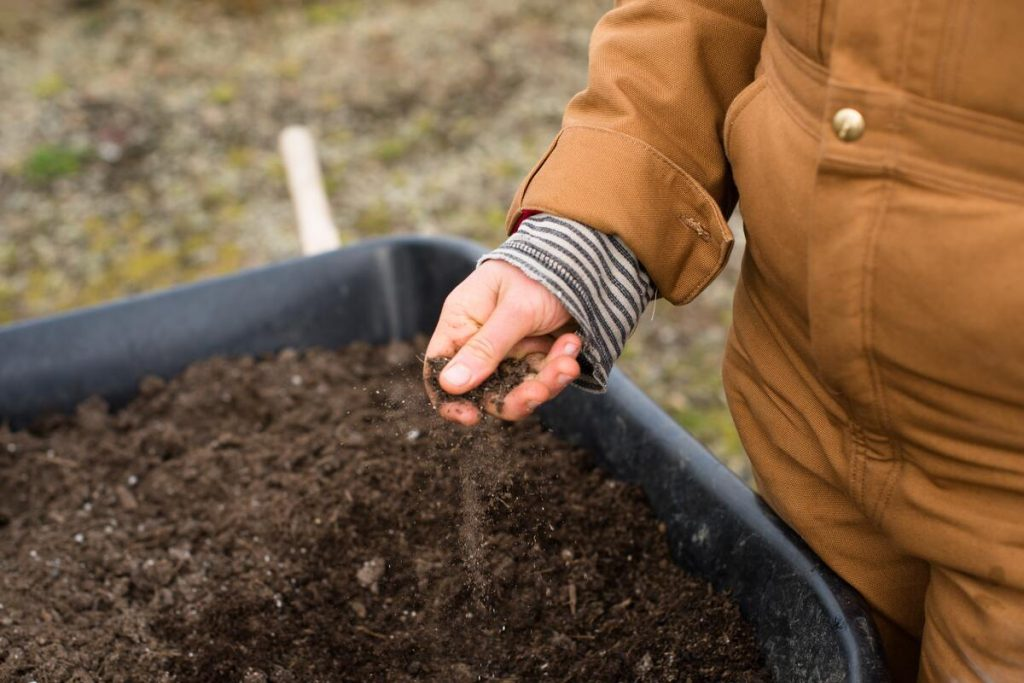 testing soil quality